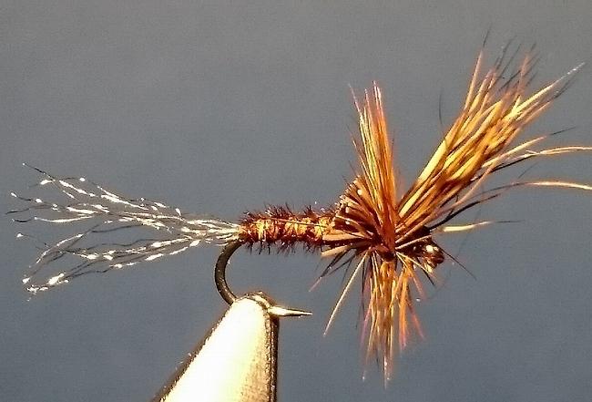 Fliegenfischer Forum - Fliegenspezial - Motto-Thread: Rehhaarflügel ...